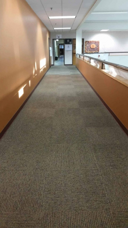 Carpet Upholstery And Rug Cleaning In Eau Claire Wi